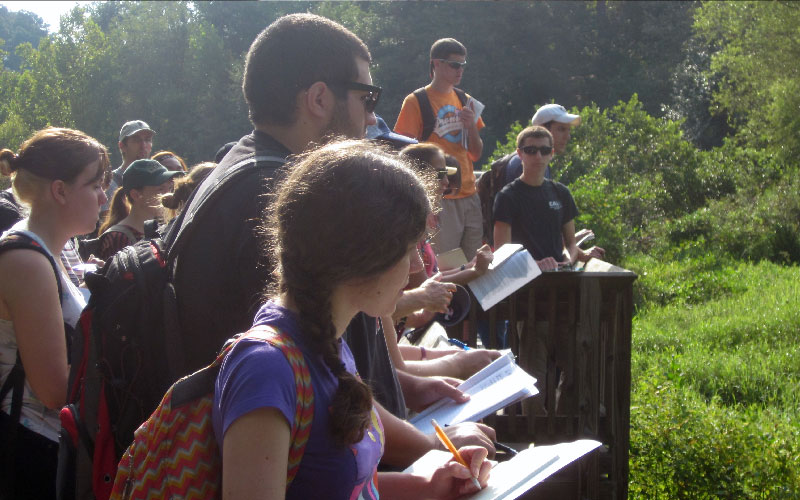 field_ecology_group