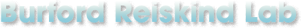 Burford Reiskind Lab Logo